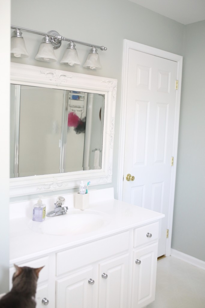 master bathroom 5